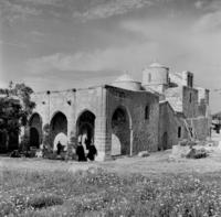 ouc/ouc_press_and_information_office_republic_of_cyprus/2b-55-3.tif